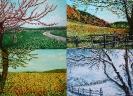 Quadrittico Le quattro stagioni